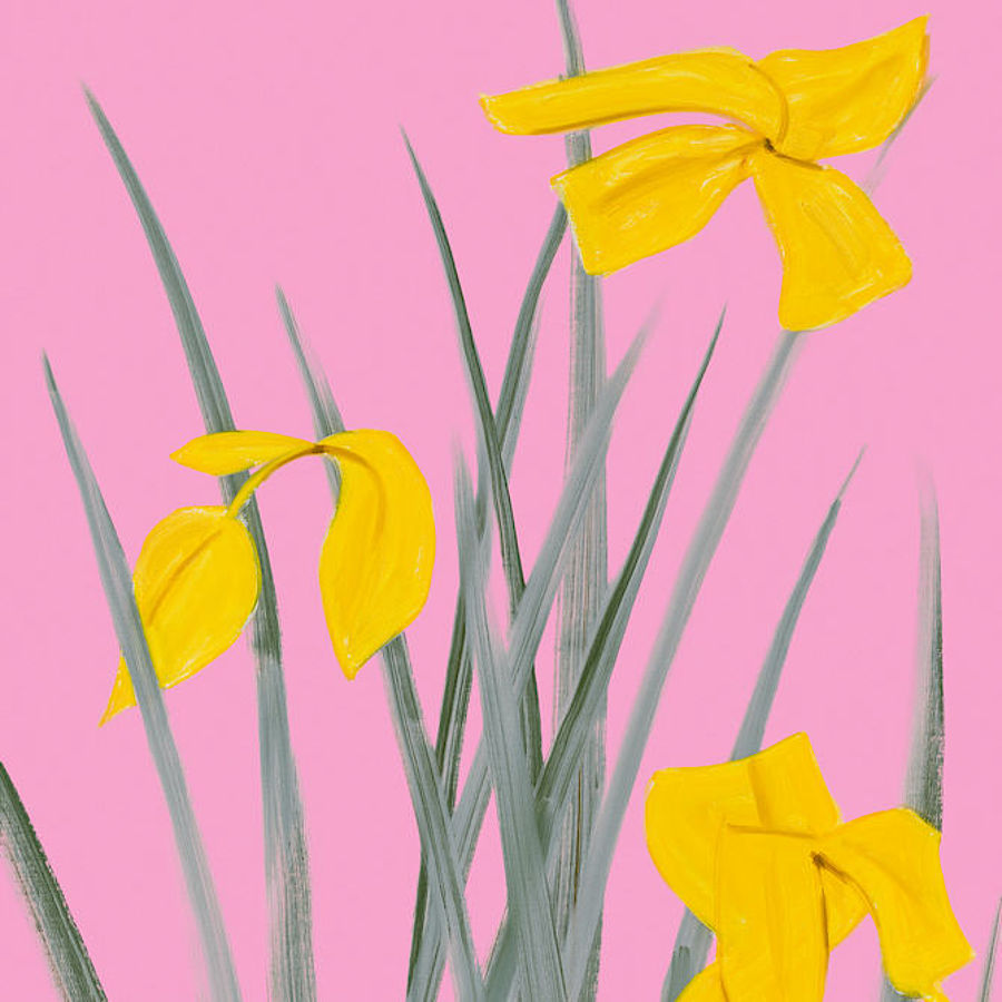 Korff Stiftung - Alex Katz - Graphics - Yellow Flags 3