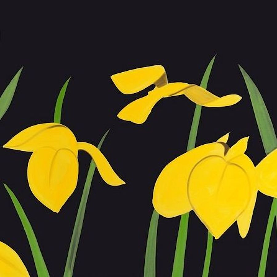 Korff Stiftung - Alex Katz - Graphics - Yellow Flags