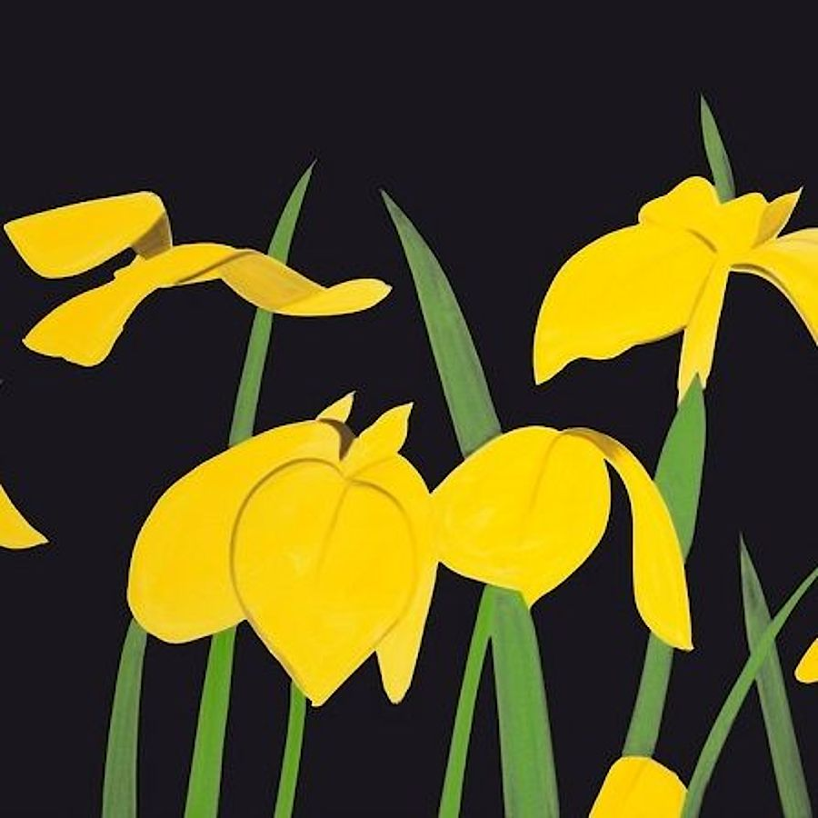 Korff Stiftung - Alex Katz - Grafiken - Yellow Flags